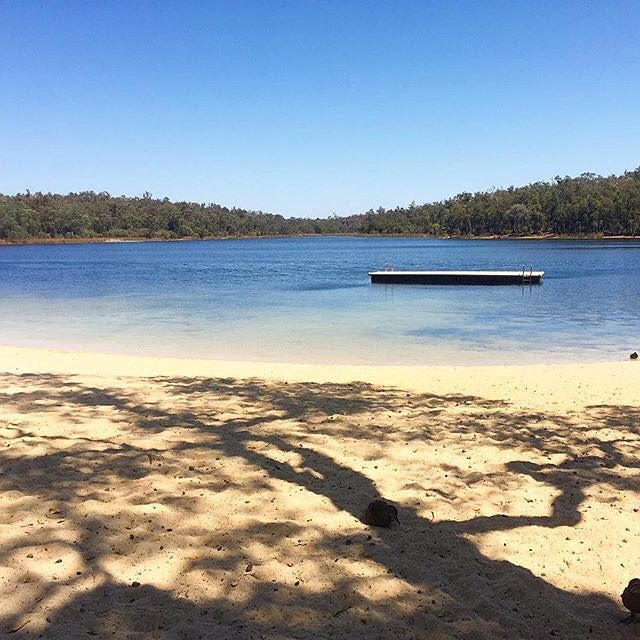 Beautiful scenery at Lake Leschenaultia - thanks to @serinasands for sharing this to #perthlife by perth_life