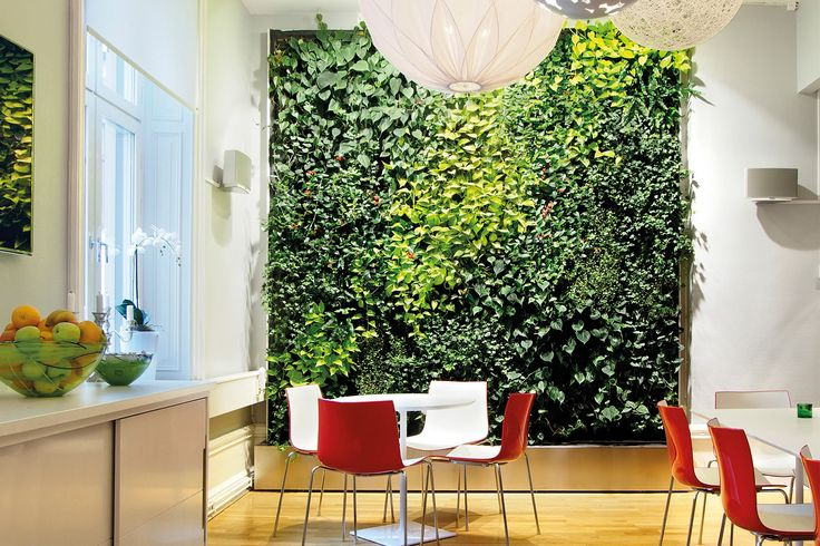 Plant wall in the office lunch room of Init, Stockholm.