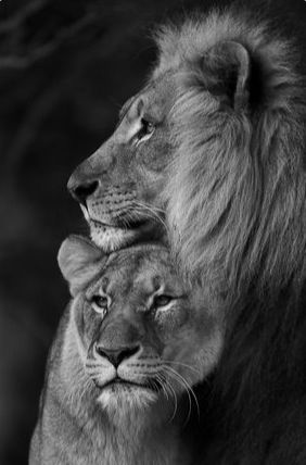 He is my King and I am his queen