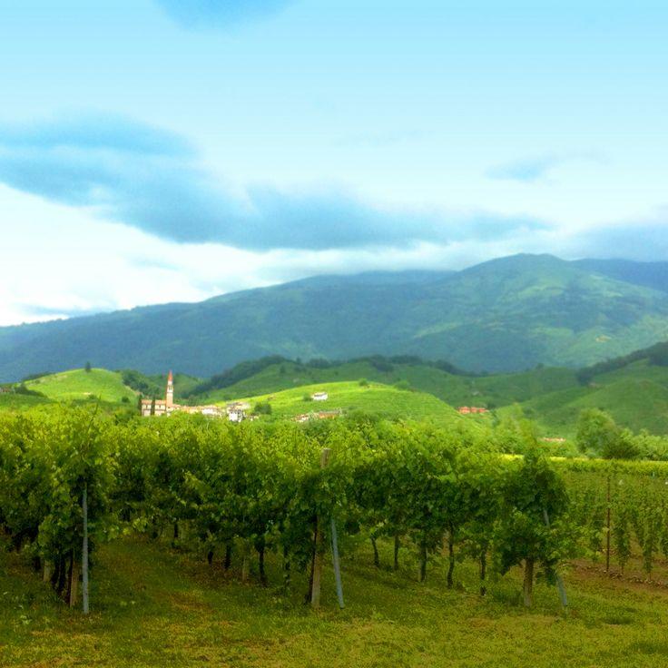 amazing #prosecco land. Welcome to #valdobbiadene