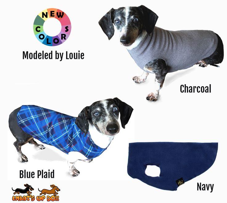 21 best Dachshund Sweaters images on Pinterest | Dachshund dog ...