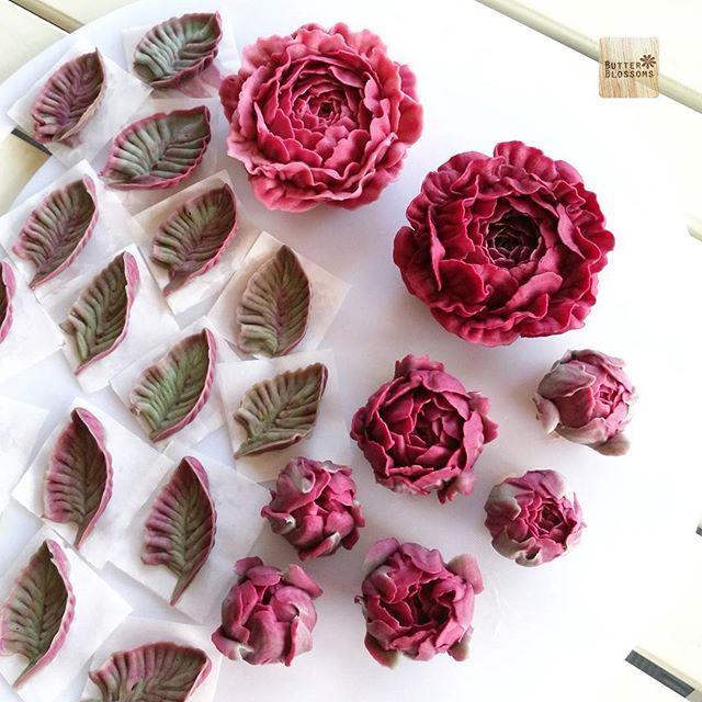 Chinese Peony In Burgundy Tone Inspo For A Chocolate Cake Butterblumenkuchen Zuckerguss Blumen Buttercreme Blumen