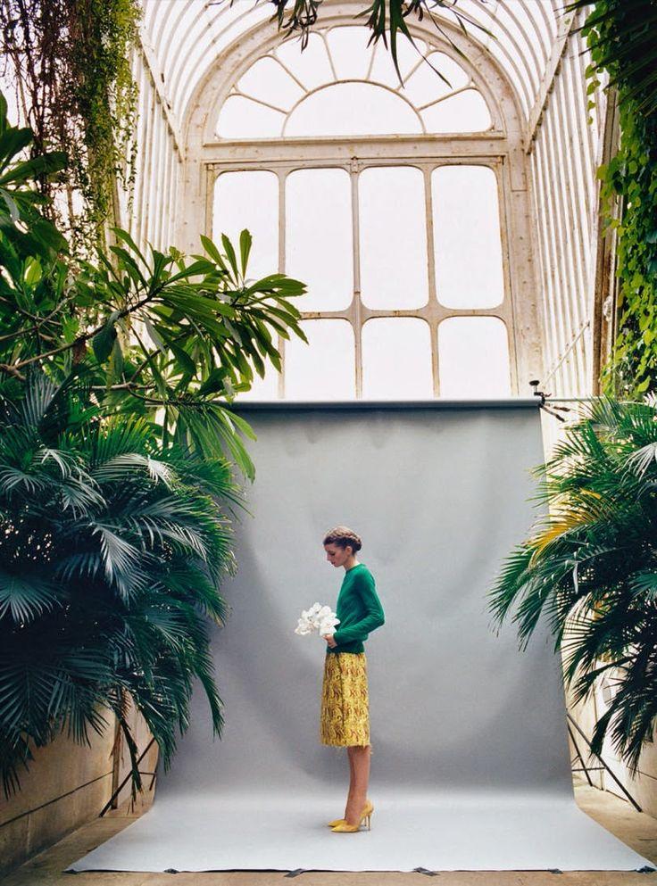 Hothouse Flowers - Luca Gadjus for Harper's Bazaar UK May 2015