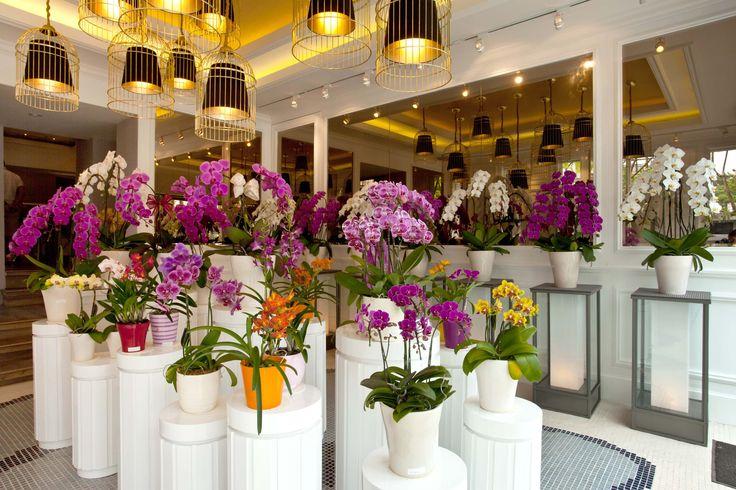 Eka Karya, Orchid Flower Store by Metaphor Interior