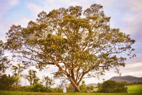 Queensland wedding locations | Kenilworth Homestead, Sunshine Coast