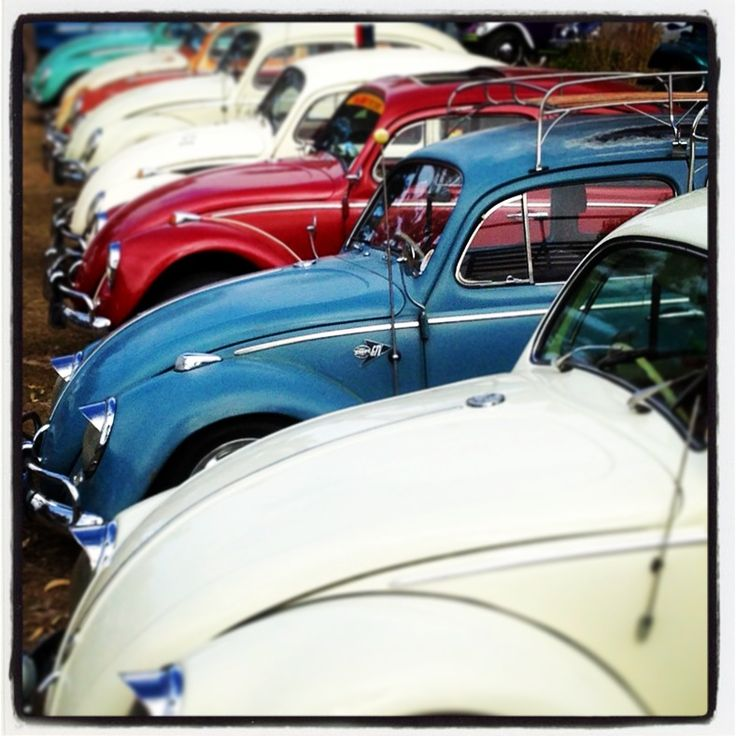 VW love the blue bug