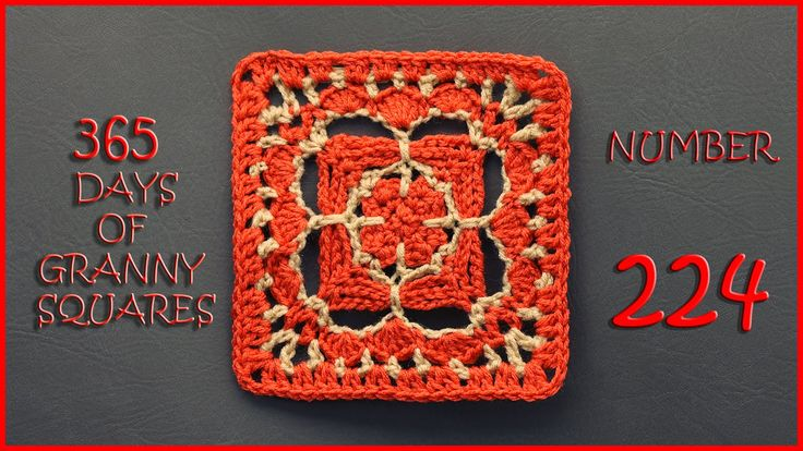 365 Days of Granny Squares Number 224