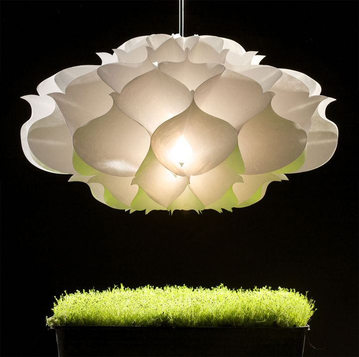 Trying to find a white lotus flower chandelier almost like this one...