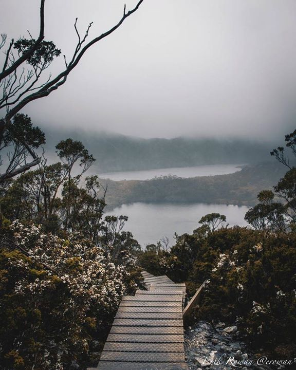 Walking through the clouds on the board walks at Cradle Mountain. Image sent in by Eric Rowan https://instagram.com/p/BNRH2fQjWJP/