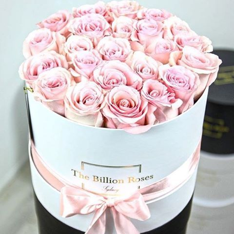 the billion roses