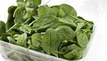 10 Top Alimentos mais Ricos em Ferro