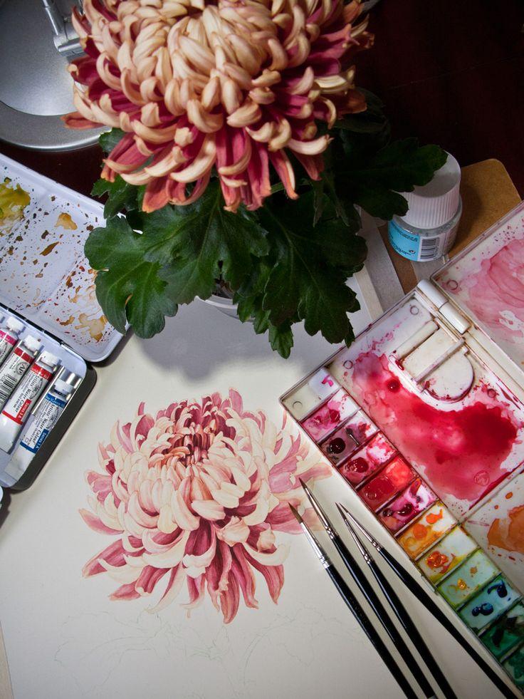 Eunike Nugroho: [WIP] Japanese Chrysanthemum - tattoo idea