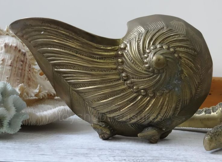 MID Century Vintage Brass Nautilus SEA Shell Planter Large 25cm | eBay