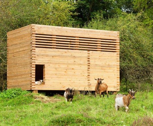 Michael Kühnlein, cabras pigmeu, Bavaria, celeiro de cabra, abrigo de cabra, galpão de madeira, galpão de madeira, asseado, pranchas de abeto, Holzbaupreis Bayern 2014, arquitetura de madeira