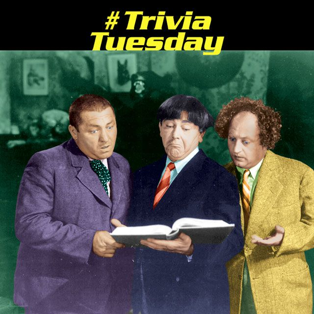 Trivia Tuesday! What was the first Three Stooges Columbia short that did not have a female cast member? These signs appeared in which short: No Smoking, No Hunting, No Fishing, No Nothing - Go Home! What is the baby's name The Three Stooges find on their porch in Mutts To You? Which Three Stooges short was a parody of the George Bernard Shaw play Pygmalion? #triviatuesday #thethreestooges #threestooges #3stooges