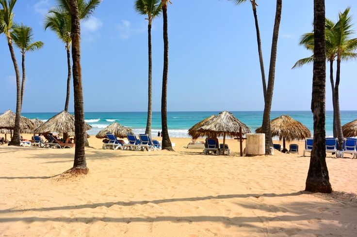 Stunning beach at Excellence Punta Cana. Look at those colors!
