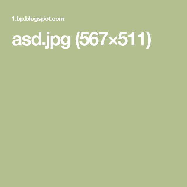 asd.jpg (567×511)