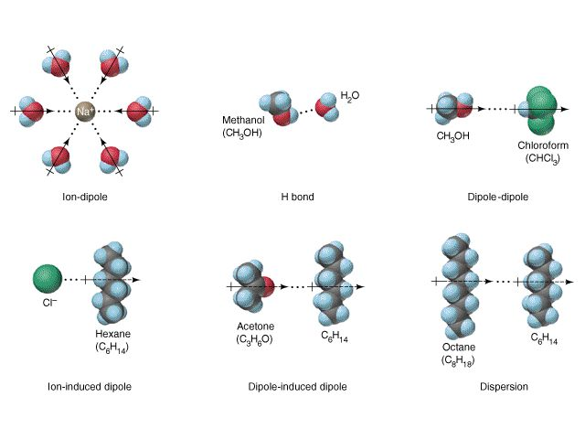 What intermolecular forces occur in a mixture of ethanol and water?