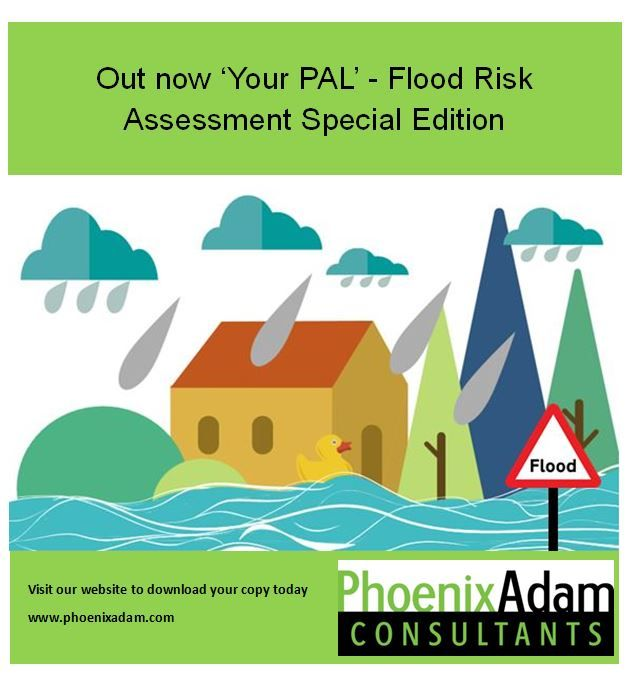 Best 25+ Flood risk assessment ideas on Pinterest Water - sample health risk assessment