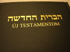 HEBREW - HUNGARIAN Bilingual New Testament / Heber - Magyar Nyelvu Ujszovetseg / Magyarorszag