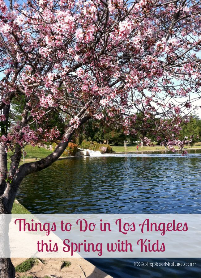 Here are some fun things to do in Los Angeles this spring with kids. Choose
