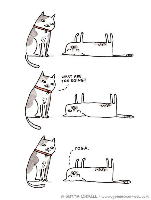 Yoga: exactly how I do it. By Gemma Correll