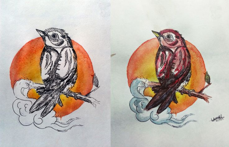 watercolors and stilograph 2014 by: Vanessa Ibarra