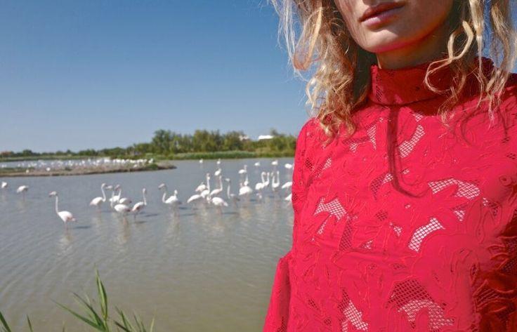 Nouvelle collection - Lace - Résille - Red - Mademoiselle Socialite