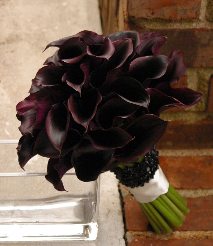 lily bouquet wedding 17 best images about black calla weddings on 5547