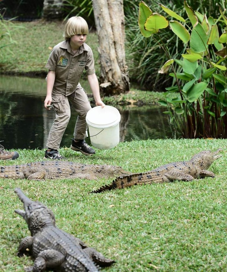 """Robert Irwin, the 8-year-old son of """"Crocodile Hunter"""" Steve Irwin, feeds fresh water crocodiles for the first time publicly at the Australia Zoo in Queensland, Australia"""