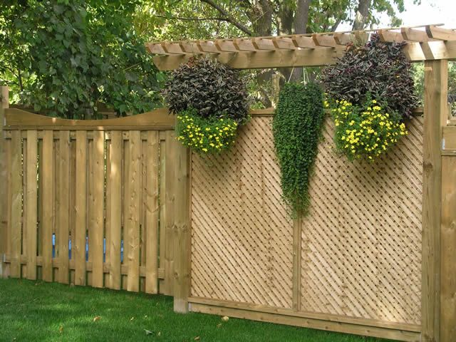 138 best yard privacy fence plant etc ideas tips images on for Lattice garden fence designs