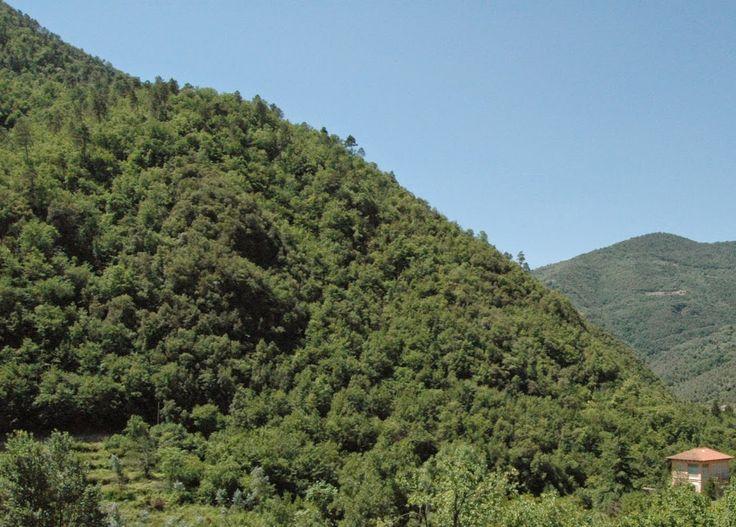 Pigna (IM): scorcio di Val Nervia