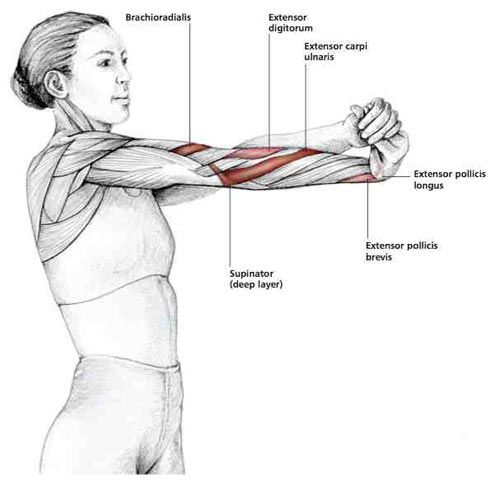 Rotating Wrist Stretch - Common Shoulder Stretching Exercises | FrozenShoulder.com