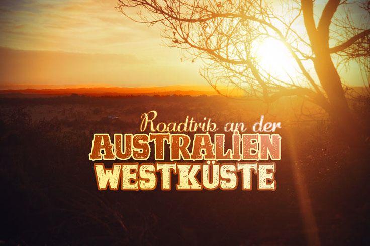 Die wilde Westküste Australiens wird von vielen als das wahre Australien bezeichnet. Ich verrate, was du bei einem Roadtrip in Westaustralien beachten musst
