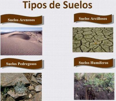 Tipos de suelos que existen suelos pinterest tipo de for Suelos y tipos de suelos