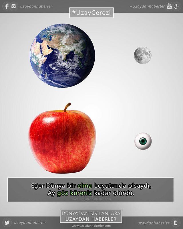 #uzaycerezi #earth #moon #apple #eyeball #sizecomparison #space #science #astronomy #dünya #ay #elma #gözküresi #boyutkıyaslaması #uzay #bilim #astronomi #uzaydanhaberler