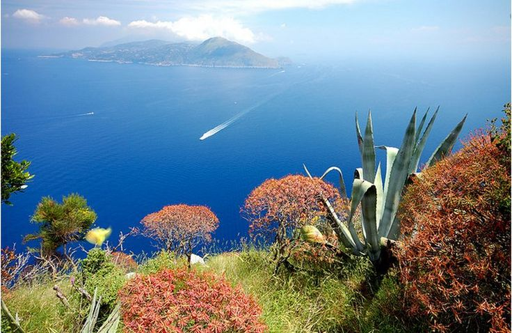 NewPix.ru - Живописный остров Капри,Италия