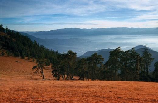 National Parks - Borjomi-Kharagauli National Park www.tblisiingeorgia.com