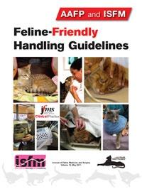 Feline-Friendly Handling Guidelines
