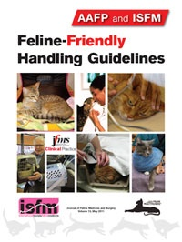 Feline-Friendly Handling Guidelines