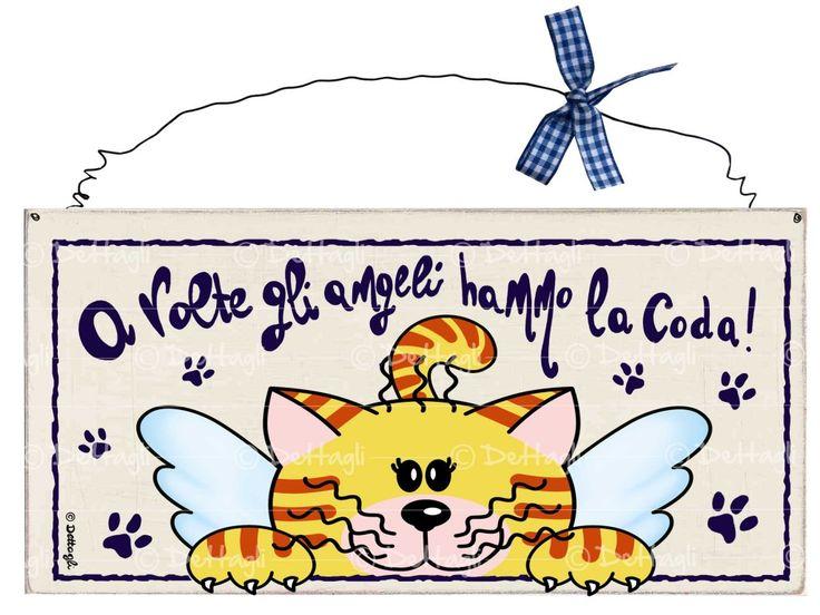 targa gatto ali