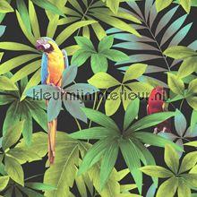 Papegaaien behang J92904 Bamboe - Exotisch Dutch Wallcoverings