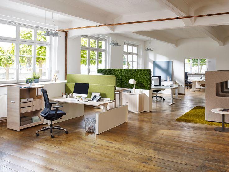 Greenery - verleiht dem Teambüro erfrischende Highlights und verbesser die Akustik. Screen von Febrü ist zudem noch ein praktischer Sichtschutz.