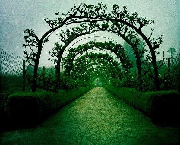 Aranyosi Ervin: Az út végén… Vajon az út végén, mi fog engem várni? Kérdésre a választ, megfogom találni? S addig vajon engem majd milyen út vezet?...