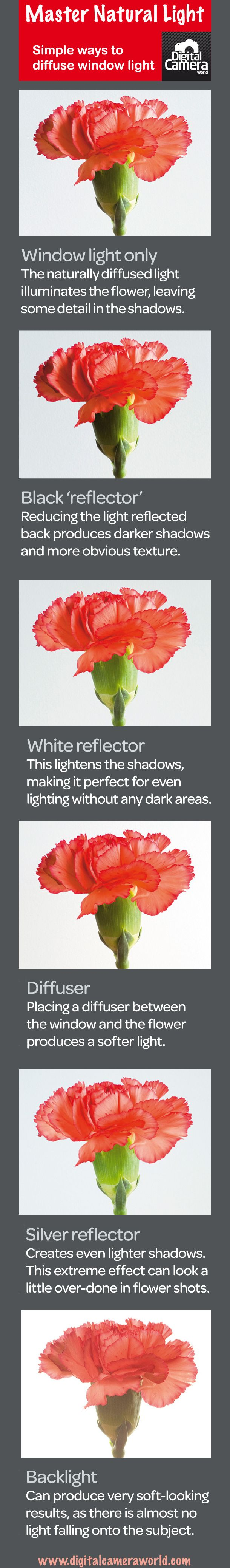 Photography cheat sheet: ways to diffuse window light - this is perfect because I just got a light deflection/filter kit for christmas!