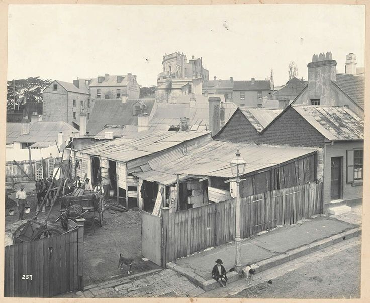 Stables at rear of No 42 Francis St,Glebe,in inner Sydney in 1900. •State Library of NSW•