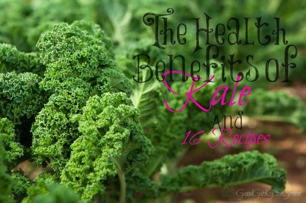 Health Benefits of #Kale - Good Girl Gone Green