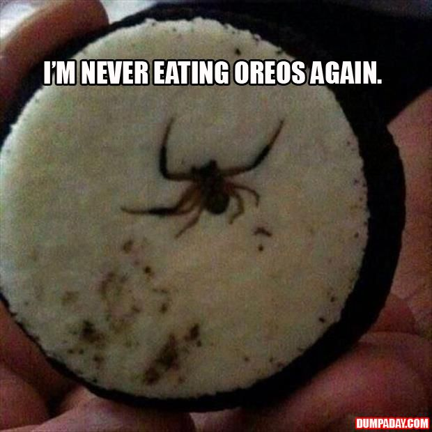 I pinned this on my funny board... But it's more horrifying than funny.