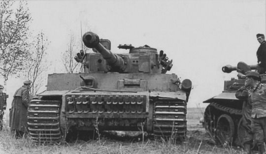 Tiger Tanks from the 505th Heavy Tank Battalion on the Eastern Front
