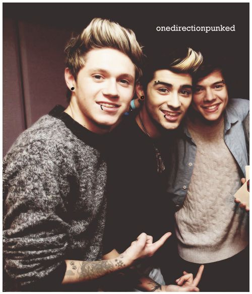 Punk Niall Horan Punk Zayn Malik Punk Harry Styles Punk One Direction